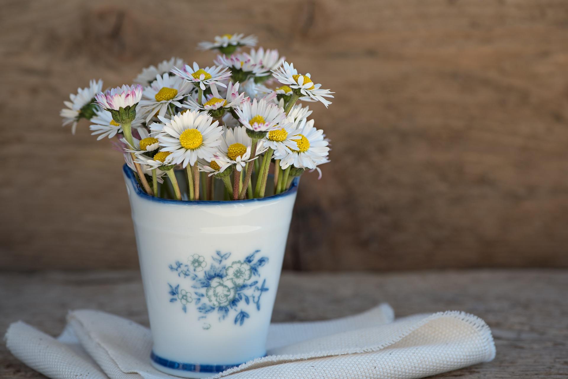 Klassieke homeopathie - madeliefjes